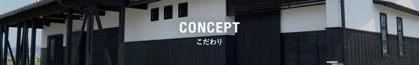 bnr_concept